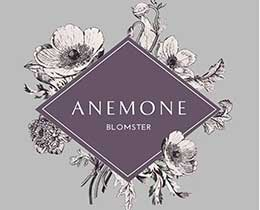 Anemone Blomster