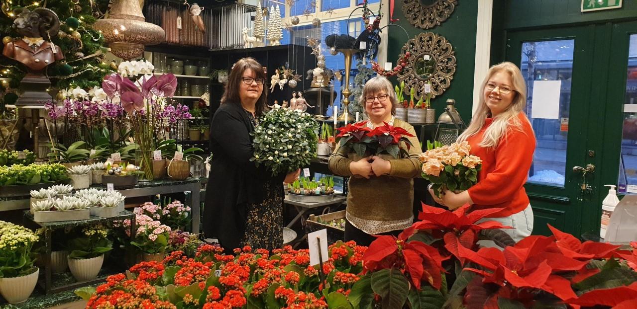 Anemone Blomster er klar for julehandel